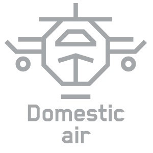 domestic air icon