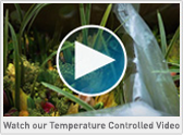 View our Temperature Controlled Video